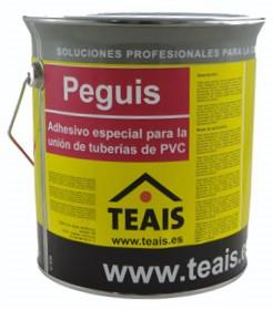 PEGIS