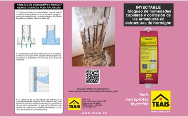 Teais Ferroprotec Inyección